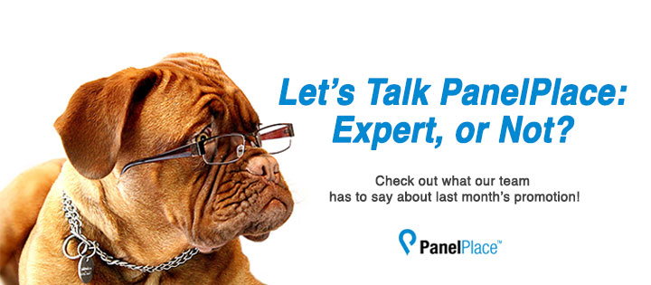 Let's Talk PanelPlace: Expert, Or Not?